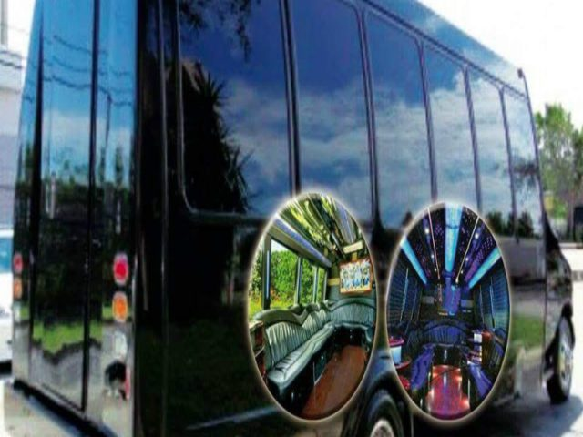 20 Passenger Party Bus - Executive